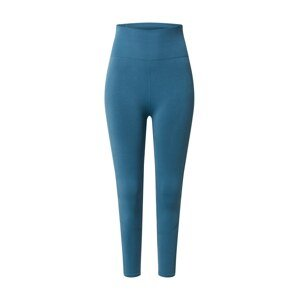 THE NORTH FACE Sportovní kalhoty 'TEKNITCAL TIGHT'  chladná modrá