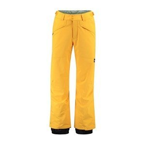 O'NEILL Sportovní kalhoty 'Hammer'  černá / limone