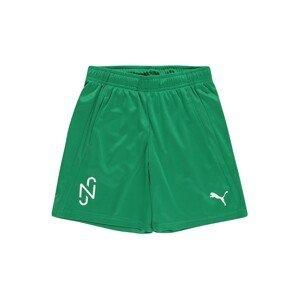 PUMA Sportovní kalhoty 'Neymar Jr'  zelená / bílá