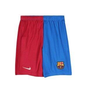 NIKE Sportovní kalhoty  modrá / červená