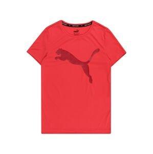 PUMA Funkční tričko  vínově červená / svítivě růžová