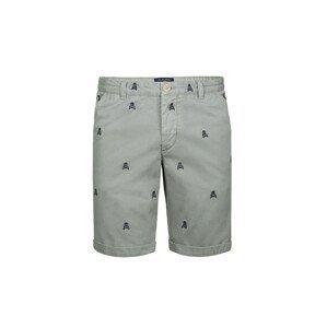 Scalpers Chino kalhoty  pastelově zelená / noční modrá
