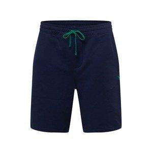 Polo Ralph Lauren Big & Tall Kalhoty  tmavě modrá / trávově zelená
