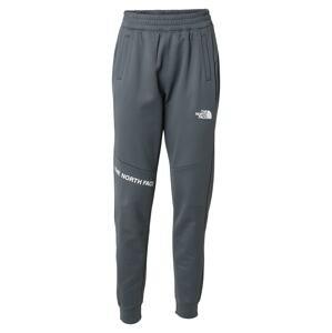 THE NORTH FACE Sportovní kalhoty  šedá