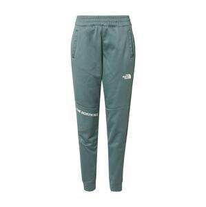 THE NORTH FACE Sportovní kalhoty  smaragdová / bílá