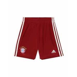 ADIDAS PERFORMANCE Sportovní kalhoty 'FC Bayern München'  bílá / modrá / karmínově červené / zlatá