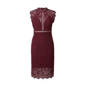 Bardot Koktejlové šaty  vínově červená