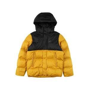 HELLY HANSEN Outdoorová bunda 'VISION'  hořčicová / černá