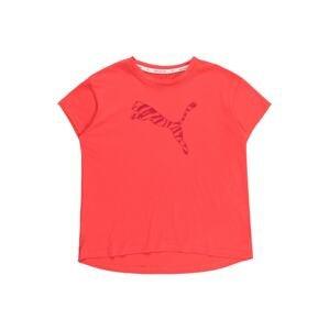 PUMA Funkční tričko  pitaya / malinová
