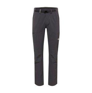 THE NORTH FACE Outdoorové kalhoty 'SPEEDLIGHT'  čedičová šedá